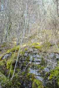 Ruines du château fort de Puy Boson (Peybouzou - Cordéac)